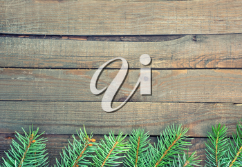 Old wooden background with pine branch, image of flooring board