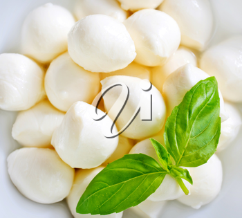mozzarella and basil on plate and on a table