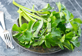 fresh celery on plate and on a table