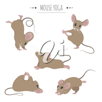 Mouse yoga poses and exercises. Cute cartoon clipart set. Vector illustration