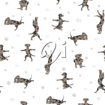 Yoga dogs poses and exercises poster design. Catahoula leopard dog  seamless pattern. Vector illustration