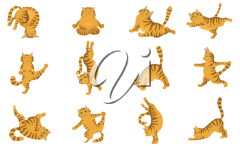 Cats yoga. Different yoga poses and exercises. Striped and tabby cat colors. Vector illustration