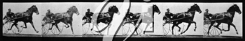 Royalty Free Photo of a Repeating Cart and Horse Pattern