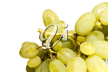 Bunch of white grapes on a white background