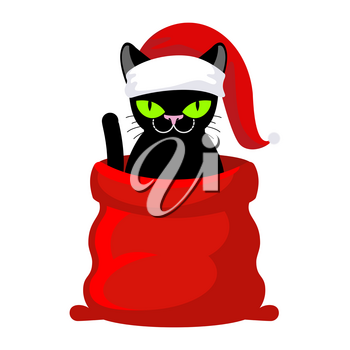 Christmas Cat. Pet in Santa Claus cap. Red bag with gifts. New Year illustration. Xmas template of cute cat
