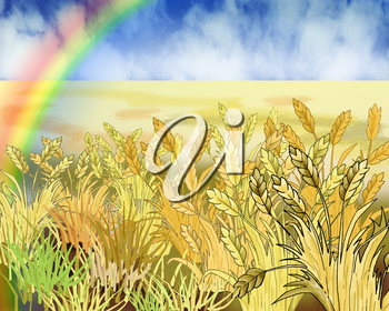 Digital Painting, Illustration of a Rainbow Over Wheat Field in Summer Day. Cartoon Style Character, Fairy Tale Story Background.