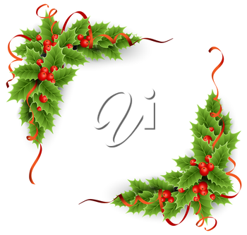 Vector evergreen holly with berries. Christmas decoration