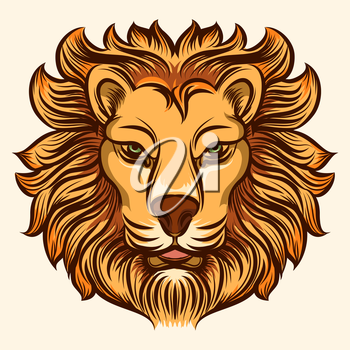 Lion head detailed icon. Lion colored head vector illustration