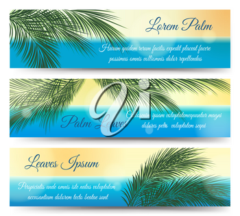 Palm leaves banners. Hawaii and guadeloupe tropical vector summer green jungle and sea banner design