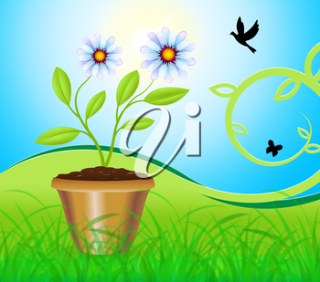 Potted Plant Meaning Flower And Gardening 3d Illustration