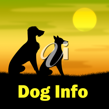 Dog Info Representing Outdoor Grass And Help