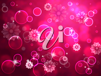 Flowers Background Showing Colorful Nature And Bloom