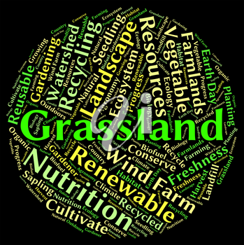 Grassland Word Showing Text Pastures And Words