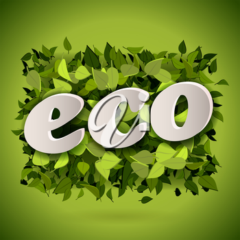 Abstract bright green leaves background with eco letters, vector illustration