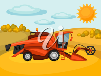 Combine harvester on wheat field. Agricultural illustration farm rural landscape.