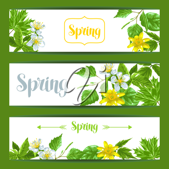 Spring green leaves and flowers. Banners with plants twig buds.