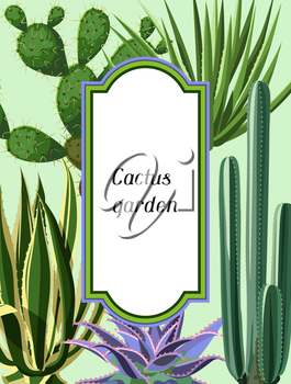 Frame with cactuses and succulents set. Plants of desert.
