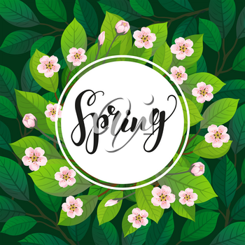 Spring text on floral background. Cherry blossom. Vector illustration of branches with flowers. Banner template. Calligraphic Lettering.