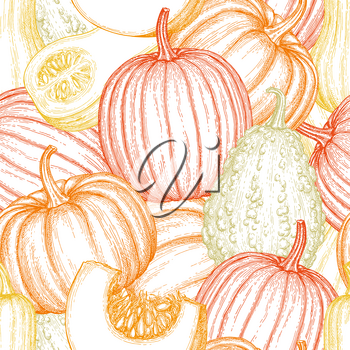 Seamless pattern with gourd, pumpkin and butternut squash