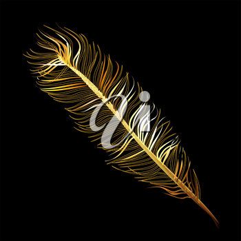 Golden Fabulous feather of magic bird on a black background