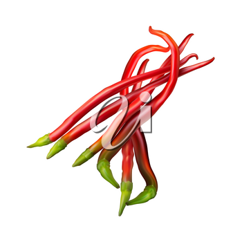 Realistic image of Mexican red hot chili pepper on white background