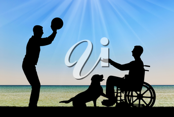 Silhouette of a disabled man in a wheelchair playing ball with a friend by the sea coast and a dog. The concept of fun pastime for people with disabilities