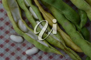 Beans. Phaseolus. Bean Seeds. Kitchen. Recipes. Tablecloth. Before cooking. Delicious. It is useful. Close-up. Horizontal