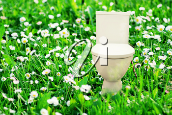 Abstract collage with fresh flush toilet bowl placed in the blooming green meadow, concept of fresh purity and ecology.