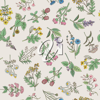 Seamless pattern of various hand drawn herbs and flowers on a gentle pink background. Vector illustration