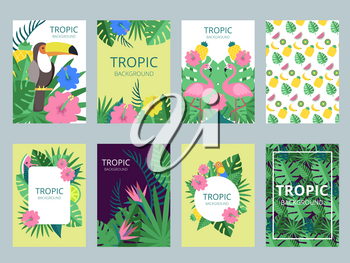 Design template of cards with illustrations of exotic plants, fruits and animals. Vector tropical card vintage with flower nature and fruit