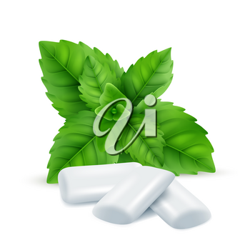 Mint gum. Fresh menthol leaves with white gum sweets for breathing fresh smell vector realistic pictures. Illustration of peppermint effect, pad of gum for chew