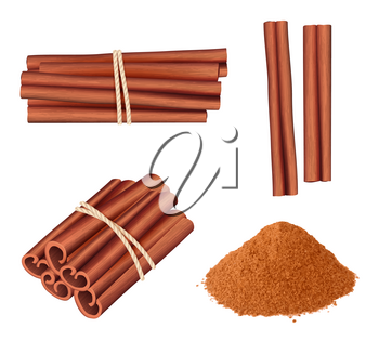 Cinnamon realistic. Aromatic herbs dessert plant food stick cinnamon spice vector pictures collection. Illustration of ingredient cinnamon, culinary spice