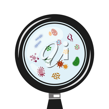 Viruses and microbes in the magnifier vector. Infection and illness illustration
