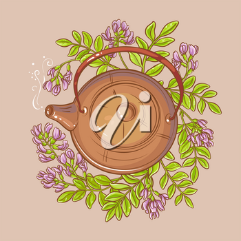 astragalus tea vector illustration on color background