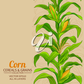 corn plant vector pattern on color background