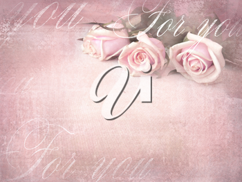 Romantic retro grunge background with roses. Sweet roses in vintage color style with free space for text.