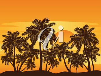 Tropical landscape with palm trees at sunset.