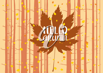 Hello autumn, lettering on an autumn leaf, fall, background landscape forest, tree trunks