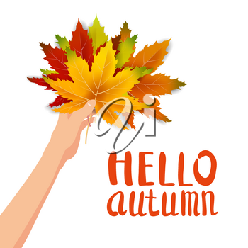 Hand hold autumn colorful leaves bright bouquet fall, floral. Hello Autumn lettering
