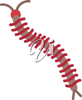 Simple vector illustration of a brown and red centipede on white background.