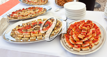 Trays with pieces of tomato pizza, omelets and rustic.